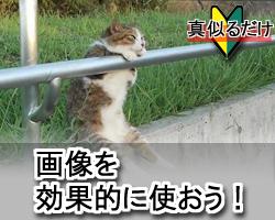 gazou_insert