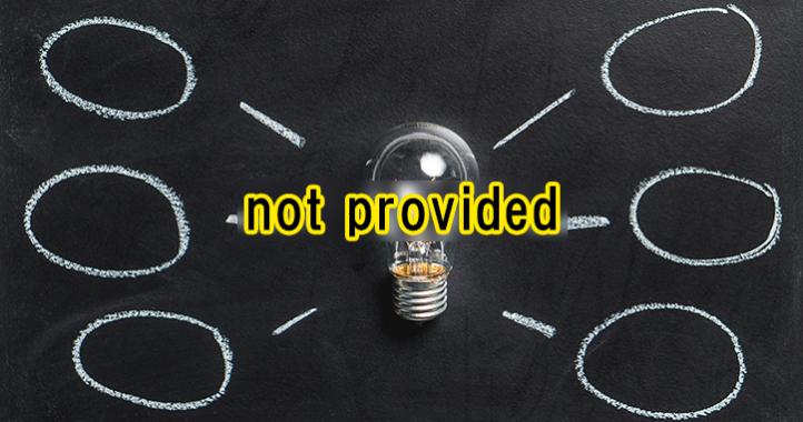 Google Analytics(アナリティクス)表示されるnot providedの正体と集客につながる対策方法