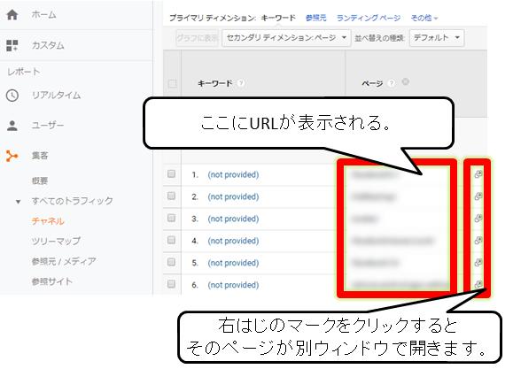 Googleアナリティクスでnot providedの確認をしている画面